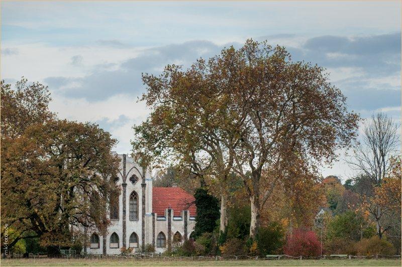 Павлиний остров (Pfaueninsel) © Фото M. Кабаковой